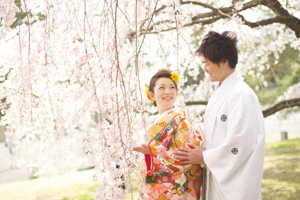 ロケフォト(桜)横
